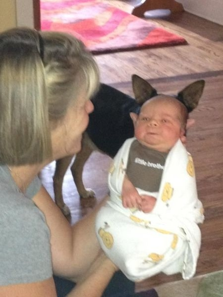The perfectly timed baby Yoda photo:
