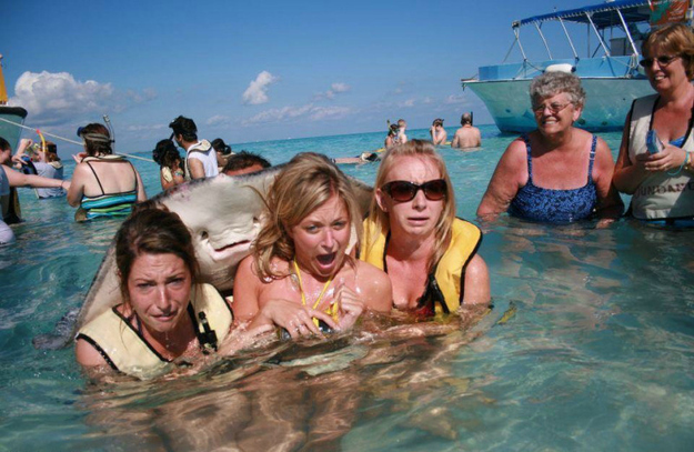 And the photobomb that changed the world: The stingray photobomb.