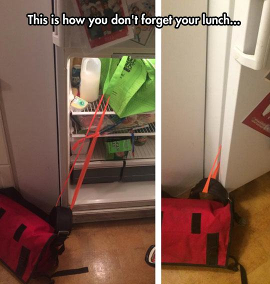 funny bag tied fridge lunch 1