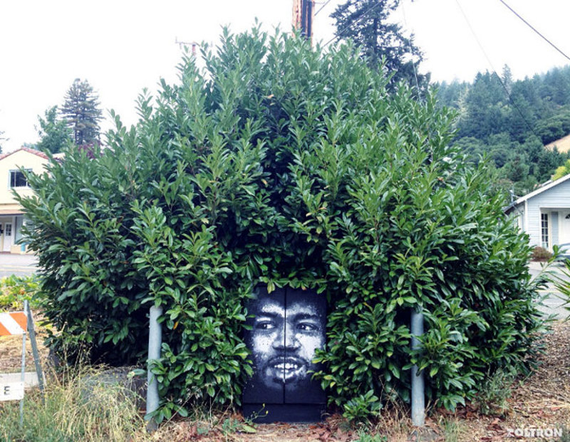 street art interacts with nature 36