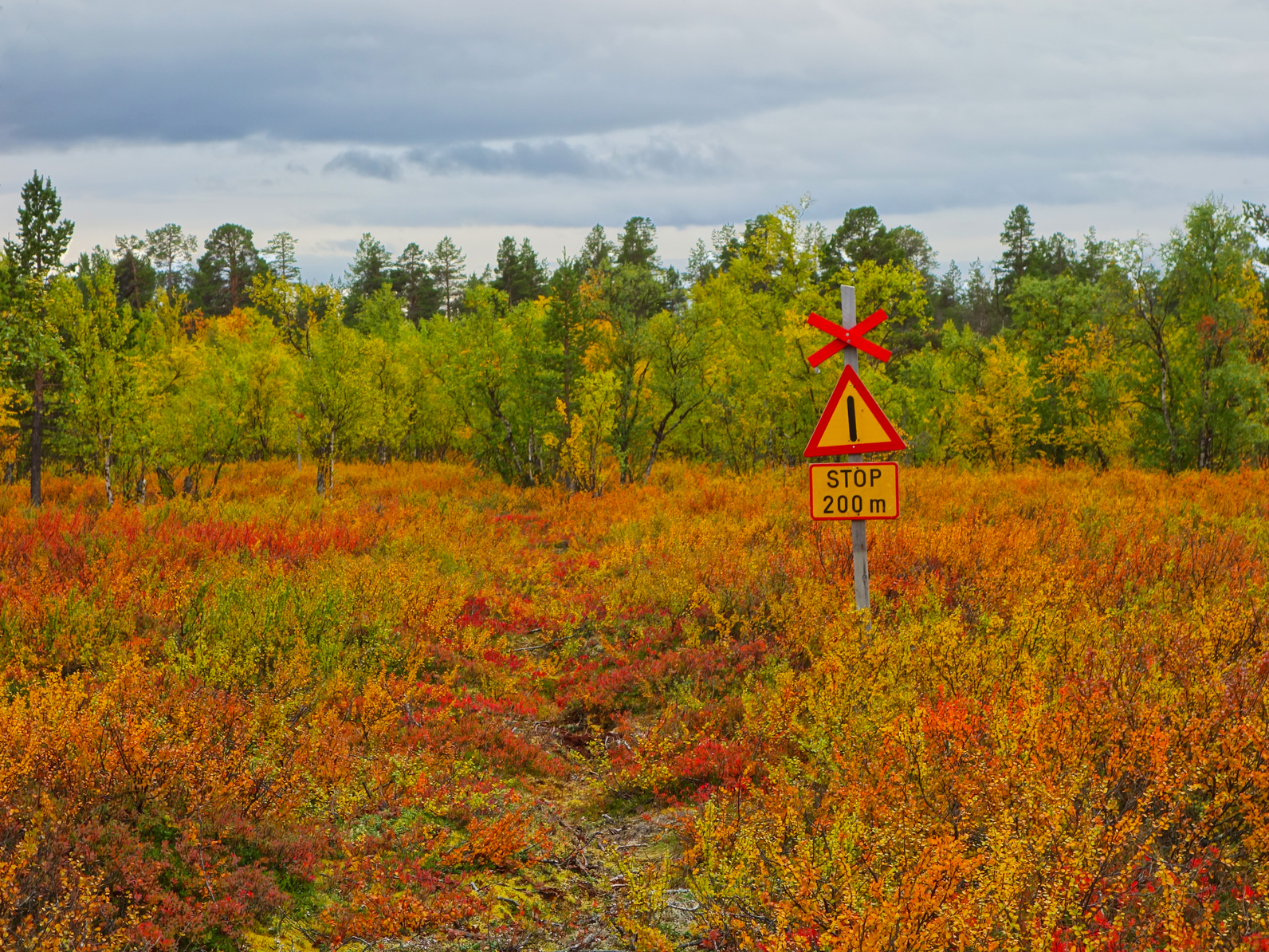 stop sign in the tundra, finnish lapland